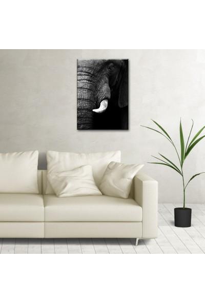 The Canvas By Cadran 70 x 100 cm Dekoratif Canvas Tablo C4C067