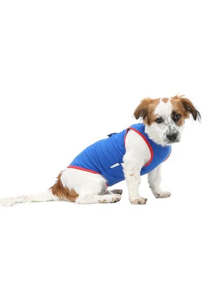 Dogi & Dog Spiderman Kedi - Köpek Atleti - Köpek Kıyafeti