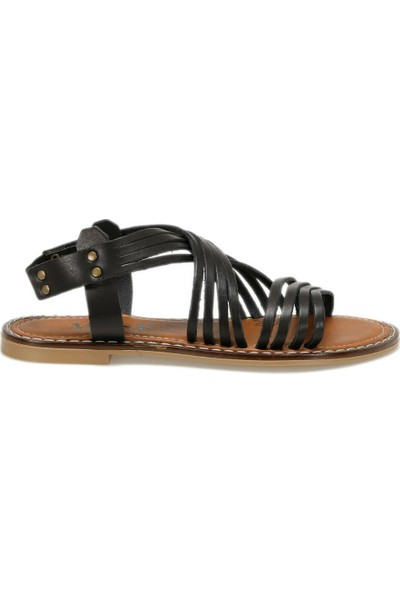 Miss F Ds18125-19S Siyah Kadın Sandalet