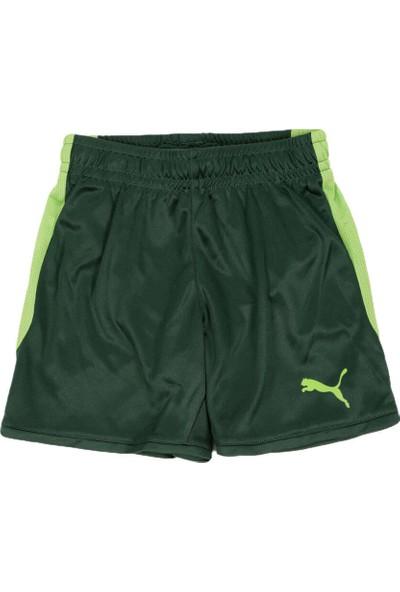 Puma 75312103 Koyu Yeşil Erkek Uzun Şort