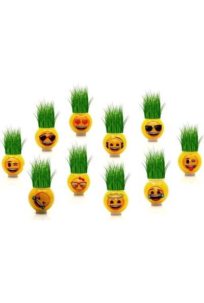 Emoji Emojili Çim Adam Lisanslı 24 Karışık Full Çeşitli