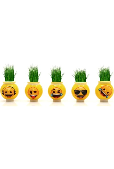 Emoji Emojili Çim Adam Lisanslı 5 Karışık Emoji Çim Adam