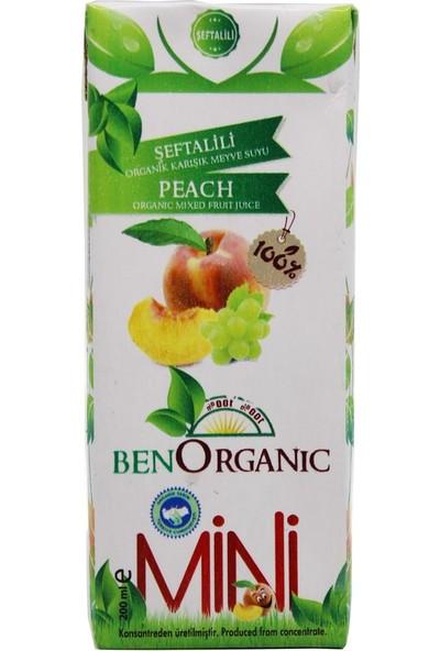 Ben Organik % 100 Şeftalili Karışık Meyve Suyu 200 ml