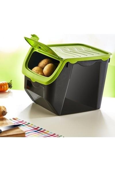 Hobby Life Mercan Patates Soğan Saklama Kabı 2li Açık Yeşil