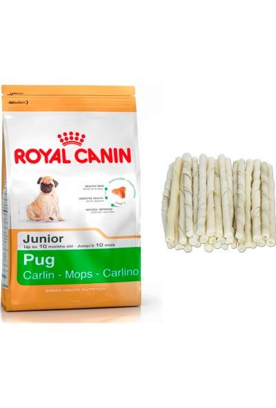 Royal Canin Pug Puppy Junior Yavru Köpek Maması 1,5 kg + 10'lu Sütlü Burgu Kemik