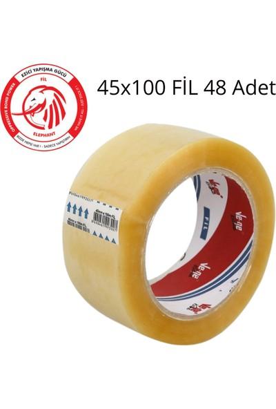 Vege Koli Bandı 45X100 Şeffaf (Fil) 48 Li