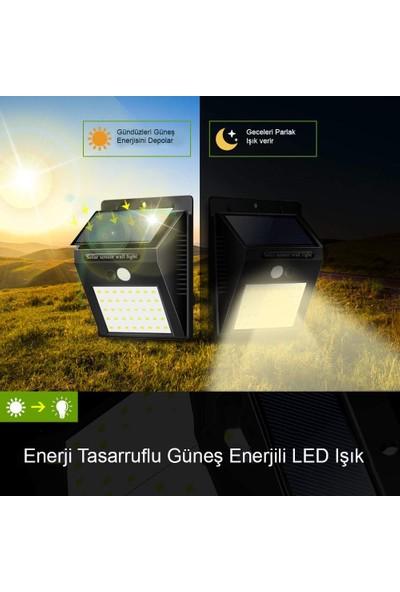 Triline Solar LED Güneş Enerjili Duvar Lambası 20 LED