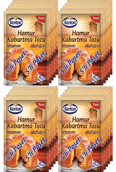 Kenton Hamur Kabartma Tozu 10 gr 20 Li Paket