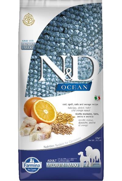 N&D Düşük Tahıllı Ocean Morina Balıklı Portakallı Yetişkin Köpek Maması 12 kg