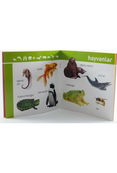 Hayvanlar Bi'tanem İçin Kitaplar
