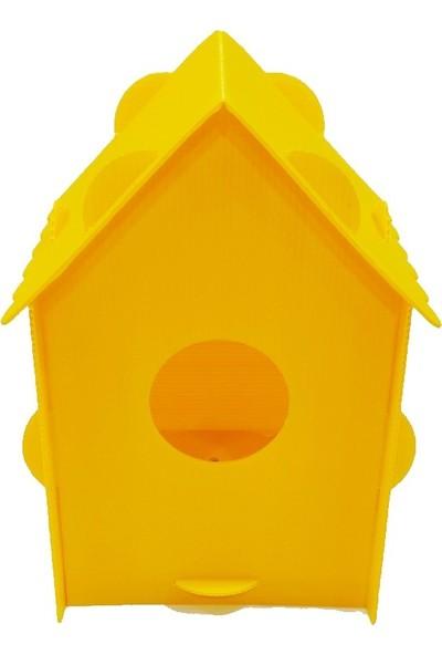 Nok Kuş Yuvası & Kuş Evi