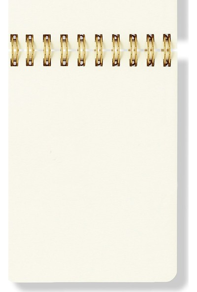 Fabooks Perfect Is Boring Spiral Notepad
