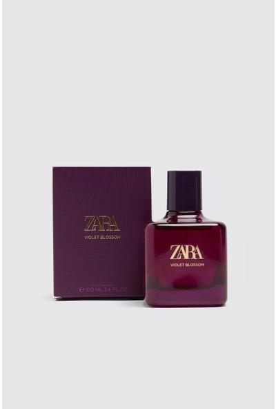 Zara Vıolet Blossom Edp 100 ml (3.4 Fl. Oz). Çiçeksi Eau De Parfum. Kiraz Çiçeği, Manolya ve Tonka Fasulyesinin Notaları Saçan Koku. Kadınsı, Büyüleyi