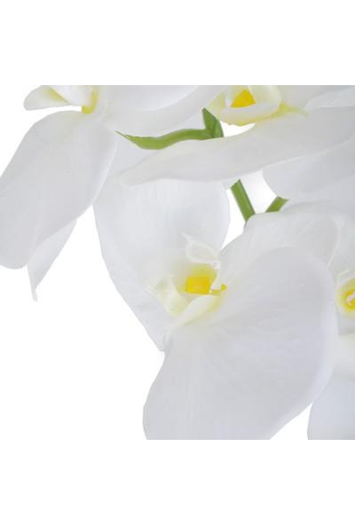 Çiçekmisin Yapay Islak Orkide