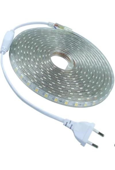 Bamyum Şerit LED 5 m 220VV 3 Çipli Fiş Ürüne Dahil