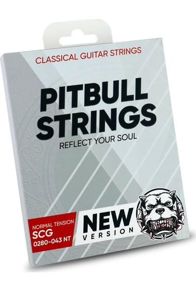 Pitbull Strings Silver Series New Version 0280-043 Normal Tension Takım Tel Klasik Gitar Teli