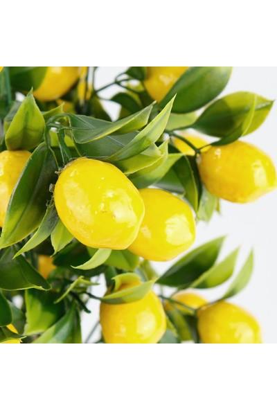 Çiçekmisin Porselen Saksıda Yapay Limon Ağacı