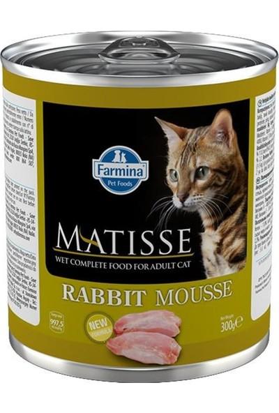Matisse Cat Mousse Tavşanlı Yetişkin Kedi Konservesi 300 G