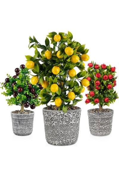 Çiçekmisin Porselen Saksıda Yapay Ağaçlar 3'Lü Set Limon Nar Kiraz