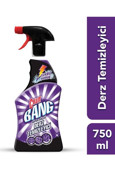 Cillit Bang Banyo Temizleyici Derz Arası Temizleyici Sprey 750 ml