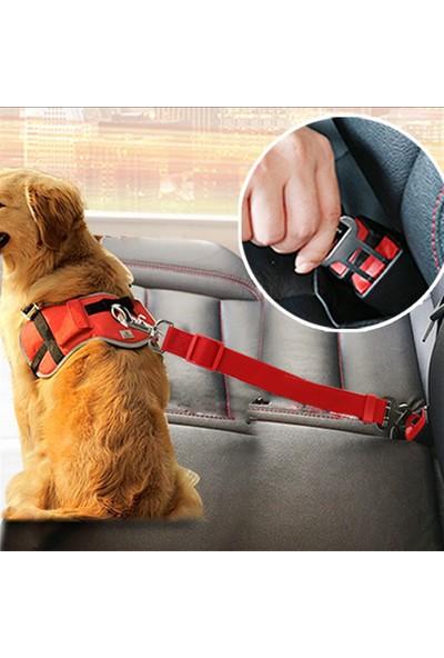 Ankaflex Kedi Köpek Araç Araba Içi Emniyet Kemeri Sabitleme Aparatı