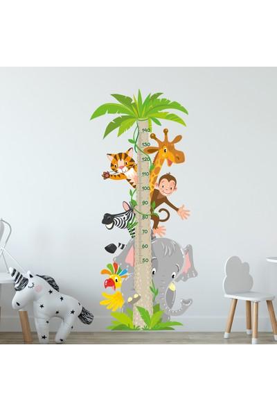 Sim Tasarım Hayvanlar Temalı Boy Ölçer Duvar Stickerı
