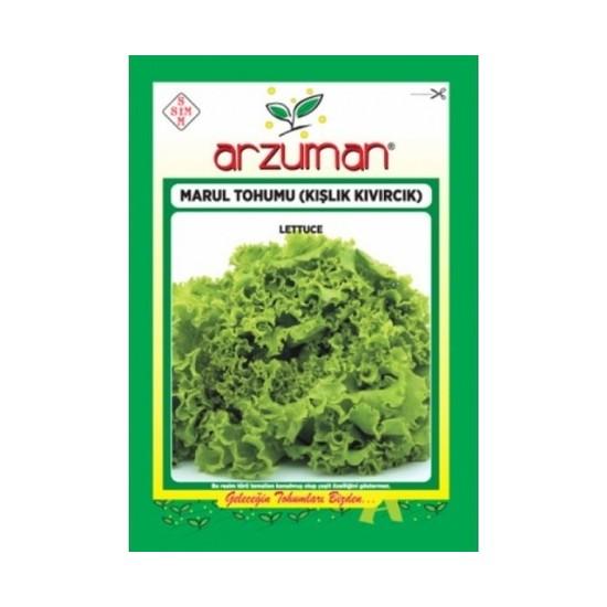 Arzuman Kışlık Kıvırcık Marul Tohumu 10 gr