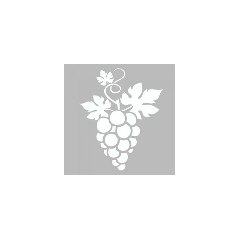 Artikel Uzum Salkimi Stencil Tasarimi 30 X 30 Cm Fiyati