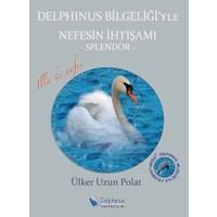 Delphinus Bilgeliği'yle Nefesin İhtişamı