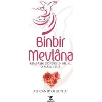 Binbir Mevlana