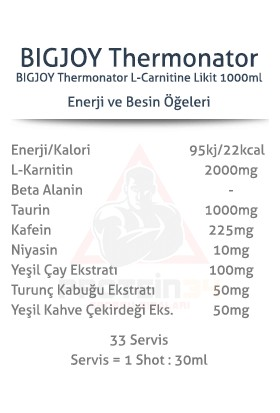 Bigjoy Thermonator L-Carnitin 1000 ml 2000 Mg Portakal Aromalı Karnitine