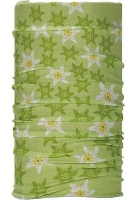 Edelweiss Green Wd1258