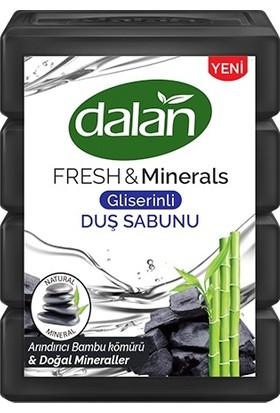 Dalan Fresh and Minerals Bambu Kömürü Duş Sabunu 600 gr