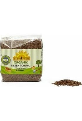 City Farm Tam Doğal Keten Tohumu 250 g