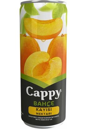 Cappy Kayısı 330 ml