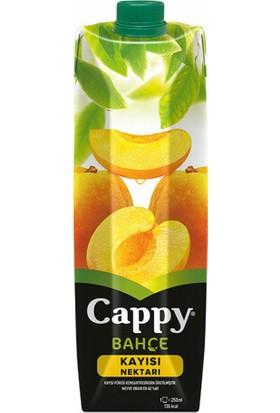 Cappy Nektar Kayısı 1Lt 12'li