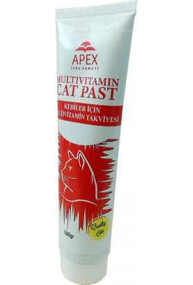 Apex Multivitamin Kedi Macunu 100 g