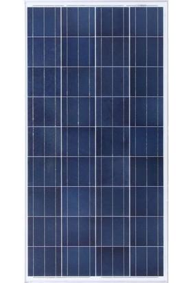 Lexron Güneş Paneli 165 W Polikristal