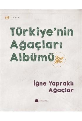 Türkiye'nin Ağaçları Albümü - İğne Yapraklı Ağaçlar
