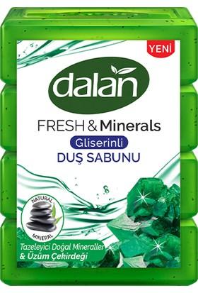 Dalan Fresh & Minerals Doğal Mineraller Duş Sabunu 600 gr