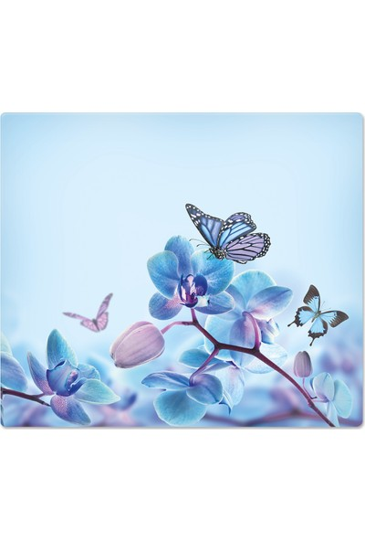Decorita Mavi Çiçek & Kelebek | Cam Ocak Arkası Koruyucu
