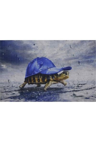 Myfloor Kaplumbağa Baskılı Kauçuk Kapı Önü Paspası