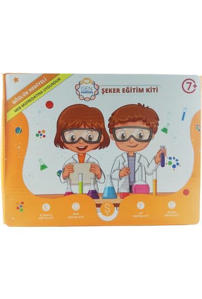 Stem Deney Seti Şeker Eğitim Kiti