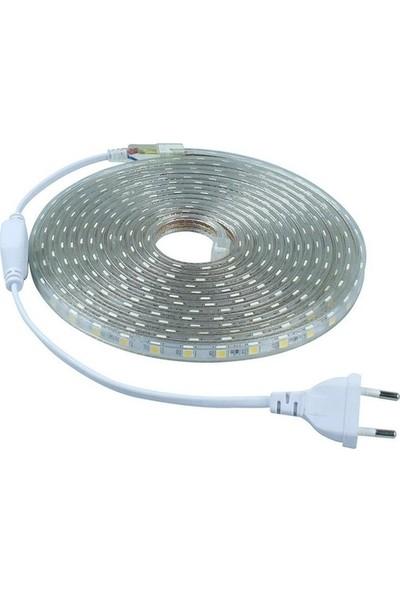 Cata Şerit LED Hortum 3 Çip Dış Mekan Smd LED Gün Işığı Renk 25 m + Fiş