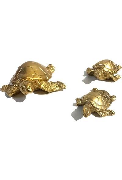 Göz Nuru Atölyesi Göznuru Atölyesi Dekoratif 3'lü Altın Rengi Kaplumbağa Biblo