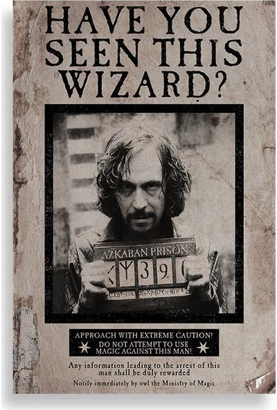 Sirius Black Aranıyor Posteri - Harry Potter