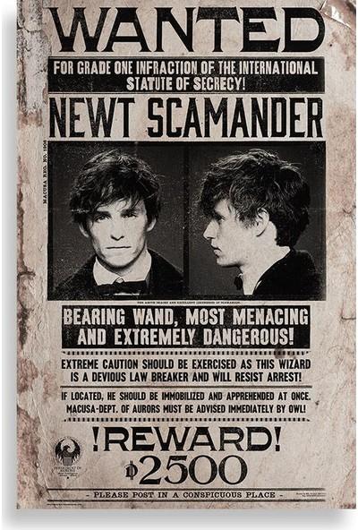 Newt Scamander Aranıyor Posteri - Fantastik Canavarlar