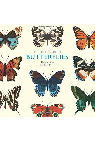 The Little Guide to Butterflies - Tom Frost