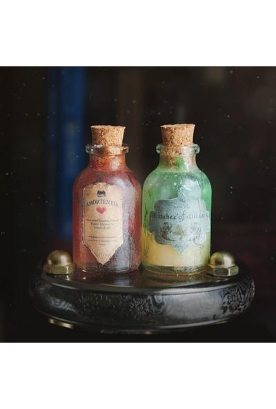 Büyücü Sokağı İksir Seti 2'li Set Harry Potter