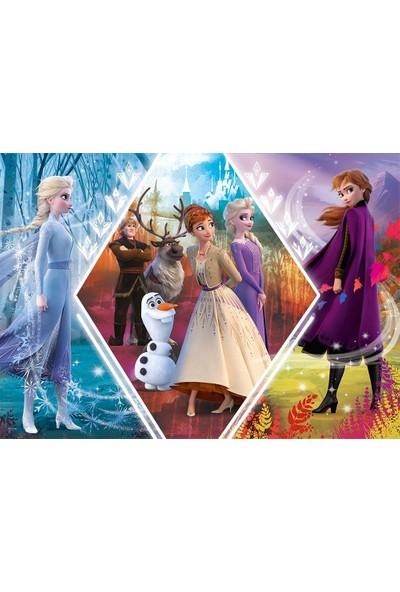 Trefl Puzzle Frozen 2 Sisters In Frozen 200 Parça Puzzle
